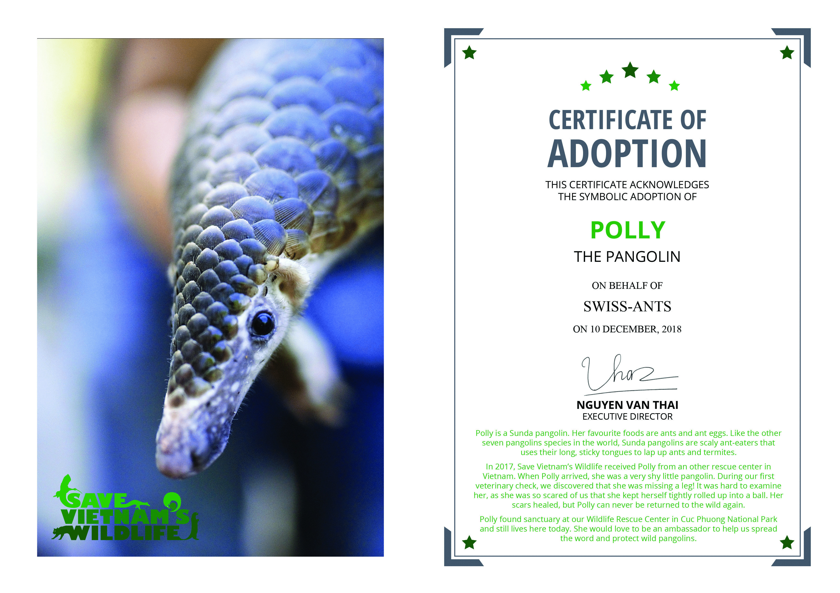 Adoption_Certificate_Polly_Swiss-Ants